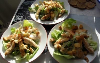 Směs listových salátů a grilované kuře